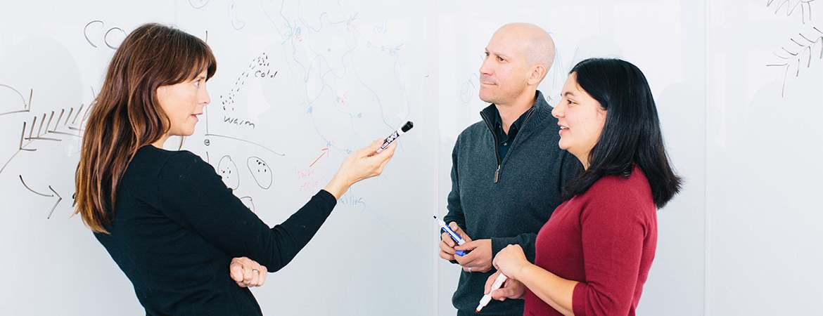 Professor Carolin Frank, left, confers with professors Jason Sexton, left rear, and Clarissa Nobile. Frank and Nobile both examine microbial communities, and Sexton studies plant evolution and adaptation.