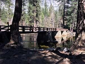 Yosemite National Park - Lower River Amphitheater