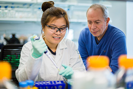 Professor Victor Munoz works with a student to better understand how proteins fold.