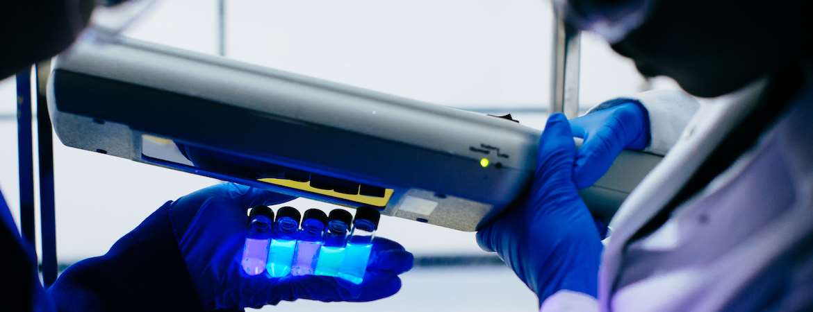 A hand holds five vials containing liquids that emit bright blue and violet fluorescence under UV light.