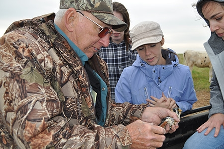 Joy McDermot, center, works with other researchers to study the kestrels on the nature reserve next to campus.