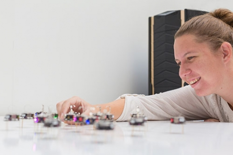 Student Katherine Copenhagen shows the kilobots she works with in Professor Gopinathan's lab. Studying flocking behavior could enable her and other researchers to program robots to behave like animals that flock or swarm.