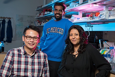 Professors Vincent Tung and Sayantani Ghosh (front) and graduate student Som Sarang have been busy with research and publications about perovskite solar cells.