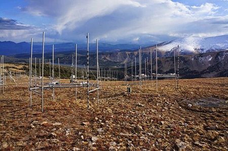 Infrared heaters are suspended from scaffolding surrounding heated plots in the alpine tundra. Photo courtesy of Andrew B. Moyes