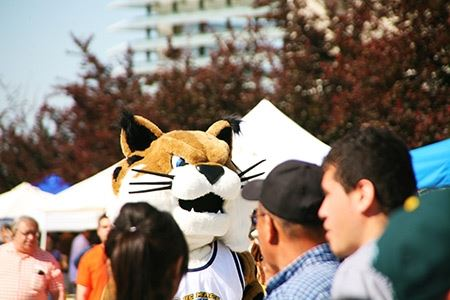 Rufus Bobcat welcomes students and their families to campus.