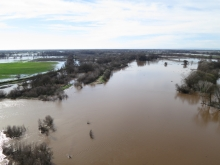 Flood conditions along the Cosumnes River allow researchers to study groundwater recharge.